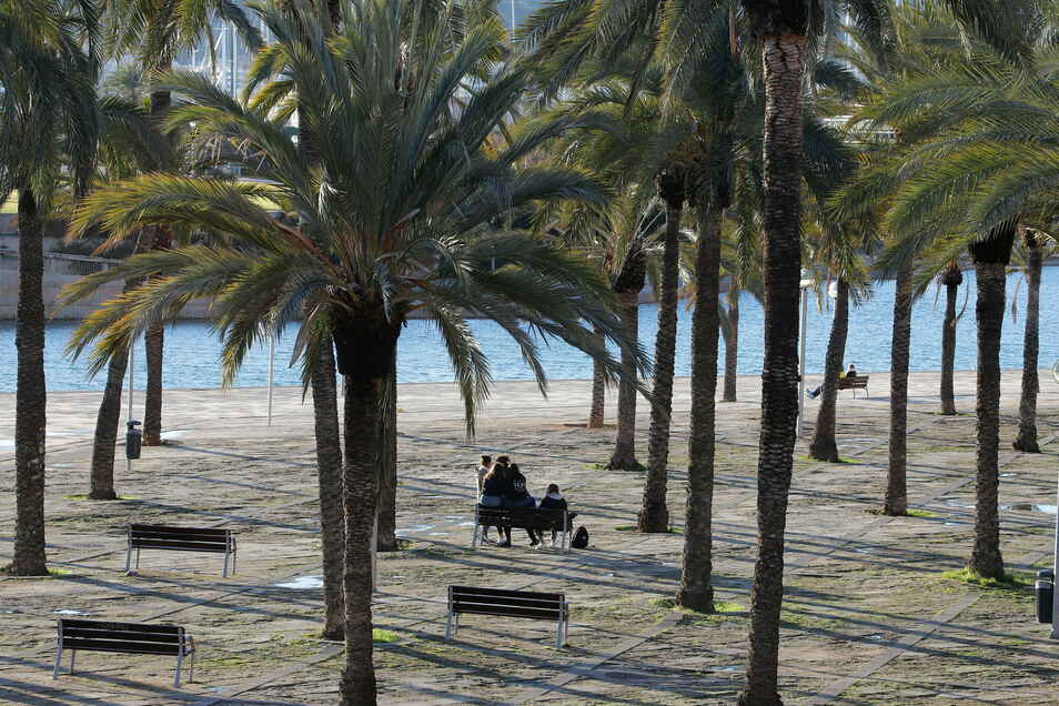 "Menschen sitzen im Park ""Parc de la mar"" in Palma."