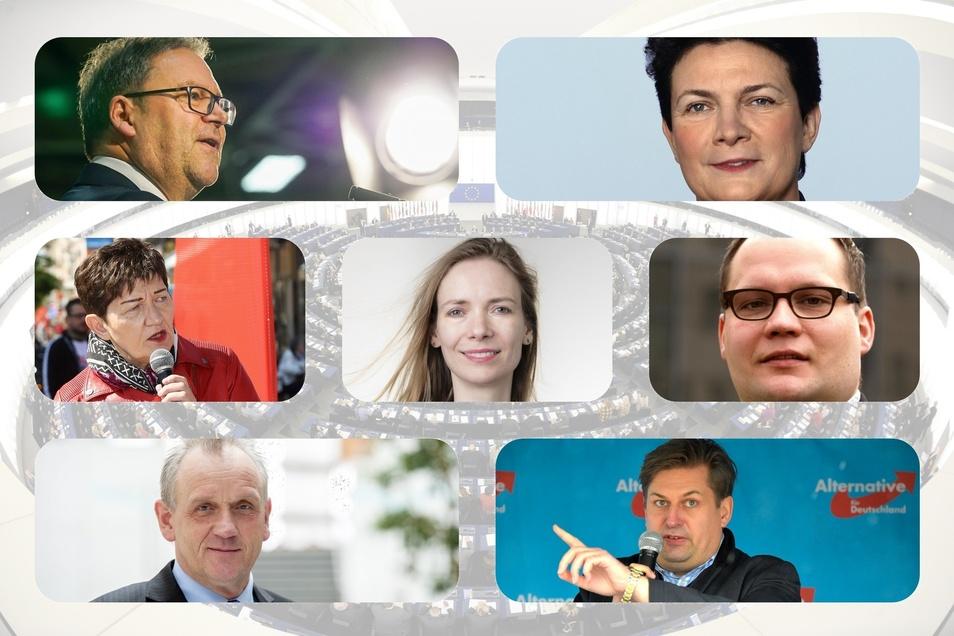 Sie alle wollen ins Europaparlament (v.l.n.r.): Hermann Winkler, Constanze Krehl, Cornelia Ernst, Anna Cavazzini, Toralf Einsle, Peter Jahr, Maximilian Krah.