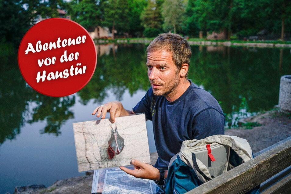 """Wenn über dem Kamenzer Tuchmacherteich die Dämmerung aufzieht, beginnt die Zeit der Fledermäuse. Bodo Plesky vom Museum der Westlausitz lädt zu einer Exkursion zu den """"Jägern der Nacht"""" ein."""