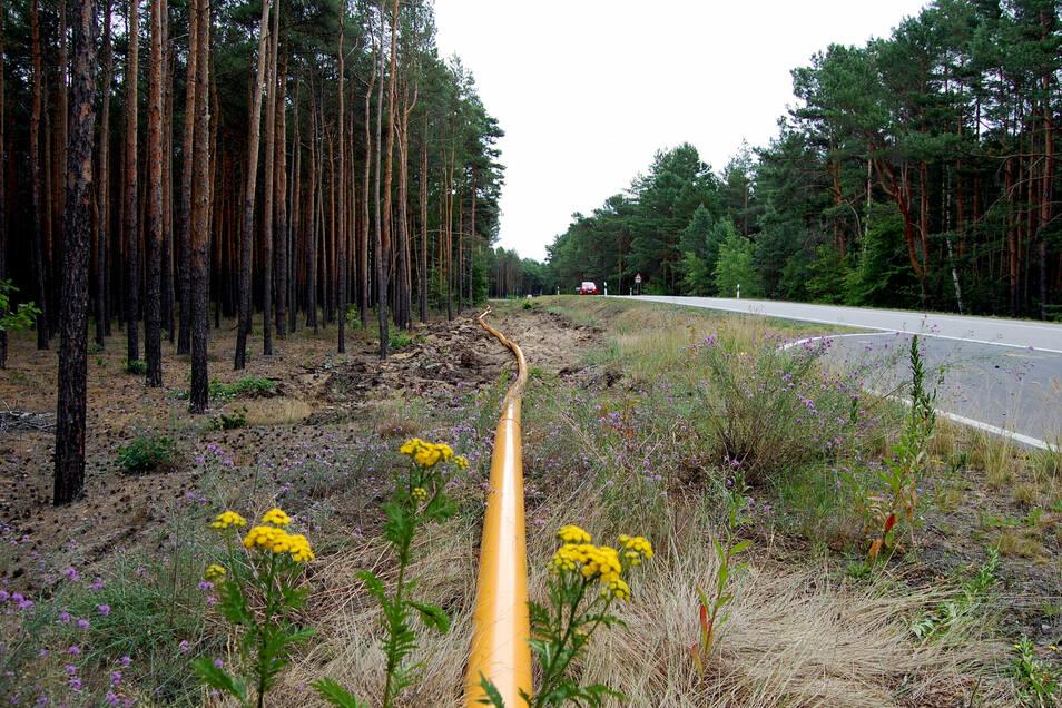 Erst kommen die Leitungen in die Erde, dann entsteht obendrüber der Radweg. Er endet bisher auf Höhe des Gewerbeparks. Laut der Ausschreibung der Stadt Hoyerswerda soll hier ab Mitte September die Lücke geschlossen werden.