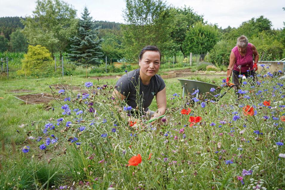 Mang Ly Thi arbeitet ehrenamtlich im Naturschutzzentrum Neukirch und hilft bei der Gestaltung des Gemeinschaftsgartens.