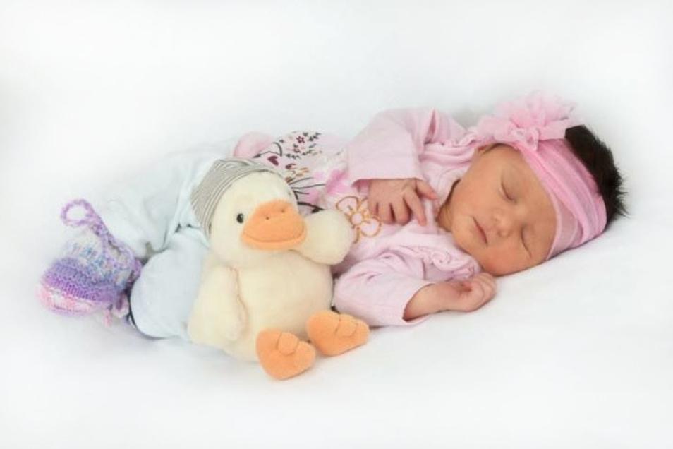 Alea Hajzeri;Geboren am 12. Oktober 2020; Geburtsort: Zittau; Gewicht: 3.040 g; Größe: 49 cm; Mutter: Jana Hajzeri; Wohnort: Zittau