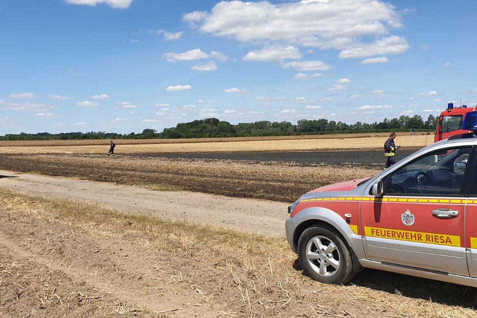 Auf einem Feld zwischen Riesa-Leutewitz und Heyda hat es am Montag gebrannt.