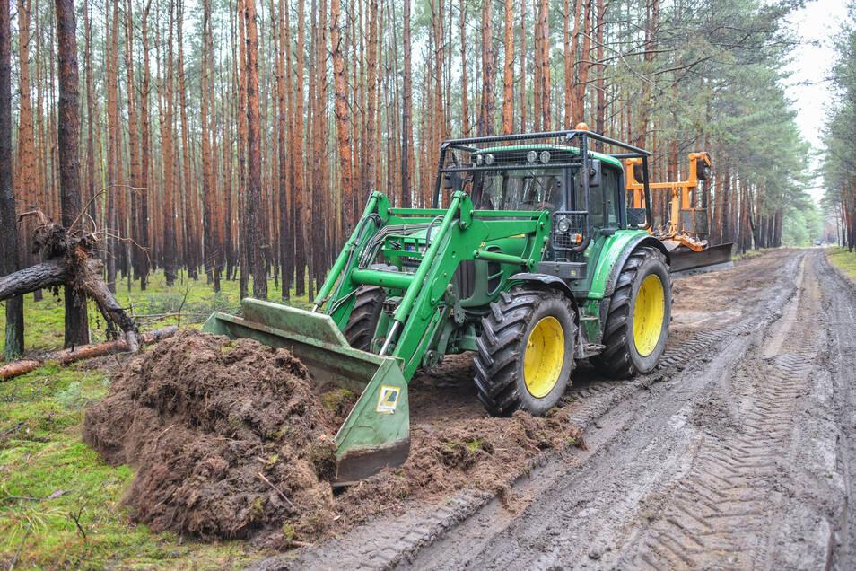 Ein Traktor vom Landesbetrieb Forst Brandenburg arbeitet an der Erschließung eines Waldweges auf dem künftigen Gelände der Tesla-Gigafactory.