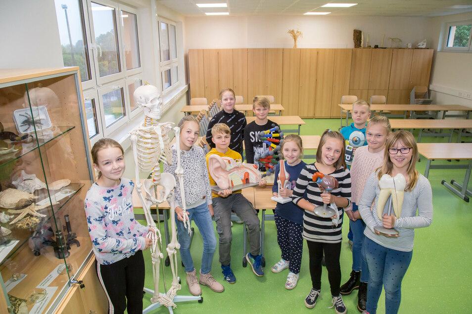 Nicht nur die Schüler der Klasse 5c werden hier künftig Biologieunterricht haben. Der Anbau der Oberschule Kodersdorf ist fertig und wird nach den Herbstferien für den Unterricht genutzt.