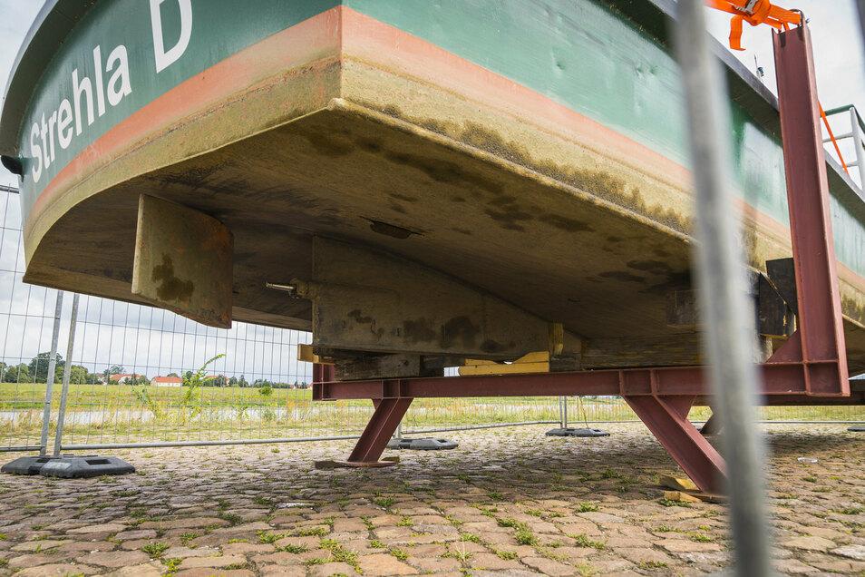 Blick unters Schiff: Der Propeller fehlt. Er liegt irgendwo in der Elbe. Ersatz ist aber schon bestellt.