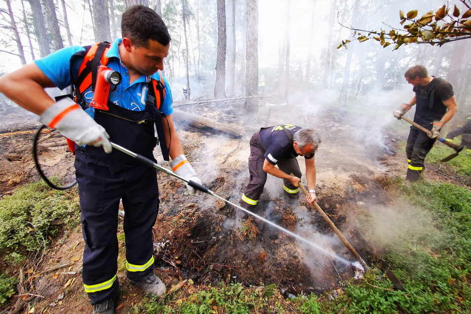 Hitze, ausgetrocknete Waldböden, abgestorbene Borkenkäferbäume. In den Wäldern wird es jetzt kritisch.