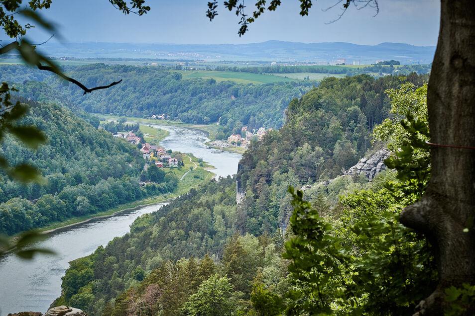 Blick von der Bastei nach Stadt Wehlen: Pfingsten wird es an der Elbe voll.