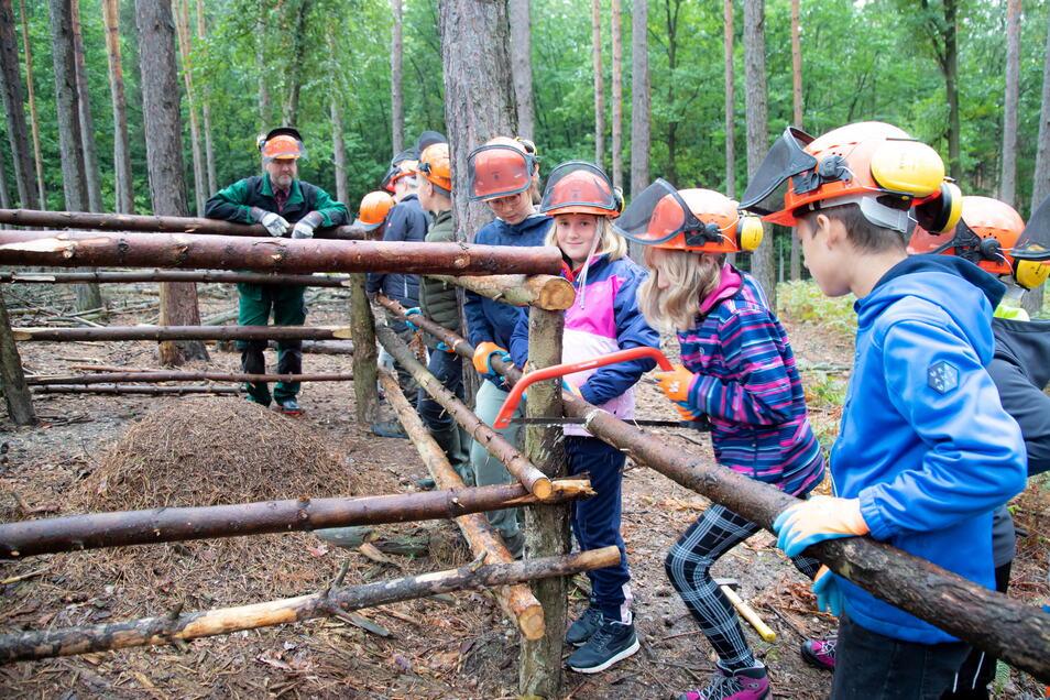 Kinder der 4. Klasse der Grundschule Hochkirch bauen mit Leiter Ralf Eichler (links) einen Zaun zum Schutz um einen Ameisenhaufen im Wildgehege des Waldschulheims Stannewisch.