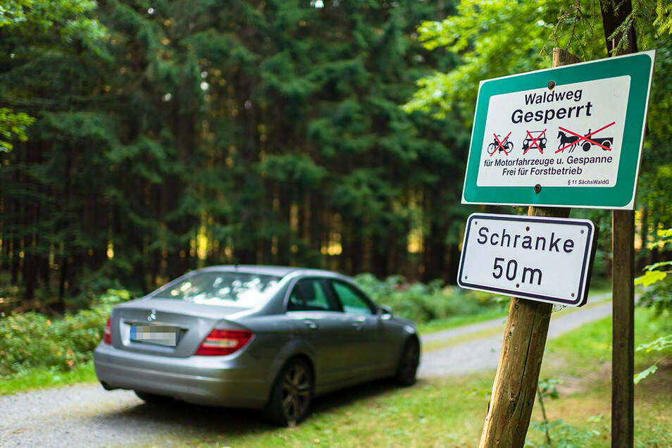 An den meisten Waldwegen - wie hier im Hohwald - steht, dass sie nicht befahren werden dürfen. Aber viele halten sich nicht dran. Ein Stück weiter rein geht immer.