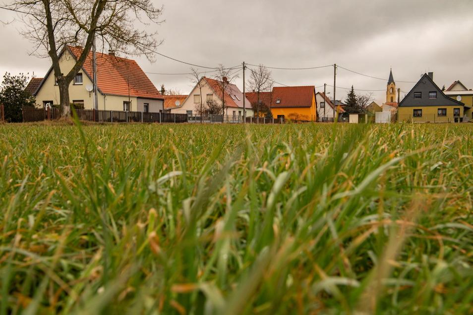 """Voll belegt ist das Wohngebiet """"Neue Siedlung"""" in Wildenhain (Hintergrund). Einige Flächen im Umfeld favorisiert der Ortschaftsrat für künftige Wohnbebauung und will dies im Flächennutzungsplan verankern."""