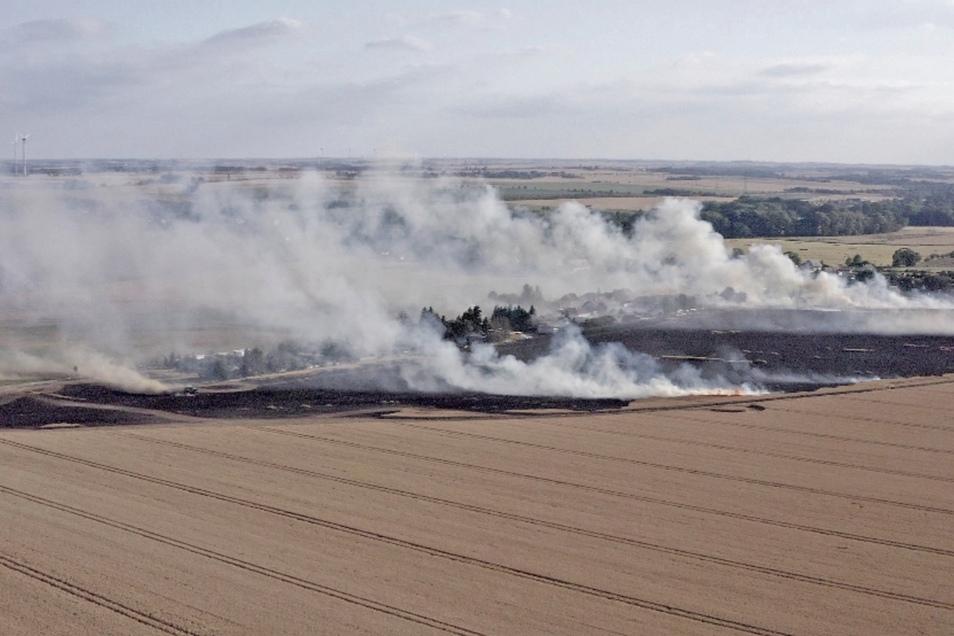 Die Bilanz des Brandes auf einem Getreidefeld in Pochra bei Canitz: zwei Verletzte und einige beschädigte Gärten. Es war der größte Einsatz seit Jahren für die Kameraden der Riesaer Feuerwehr, die von umliegenden Feuerwehren unterstützt wurde.