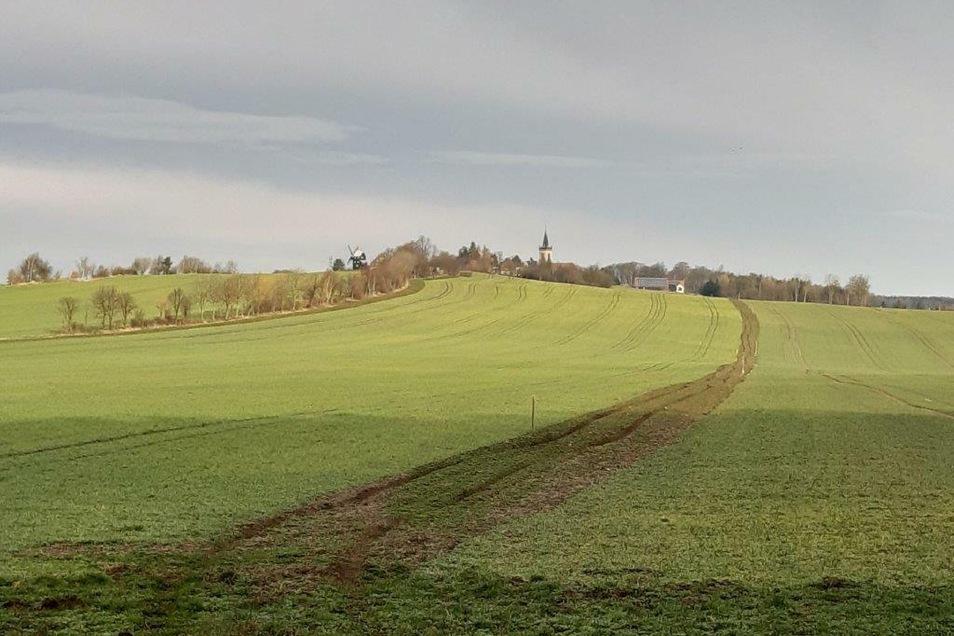Der Standort des Feldraines: Östlich von Kottmarsdorf entsteht ein Wiesenstreifen.