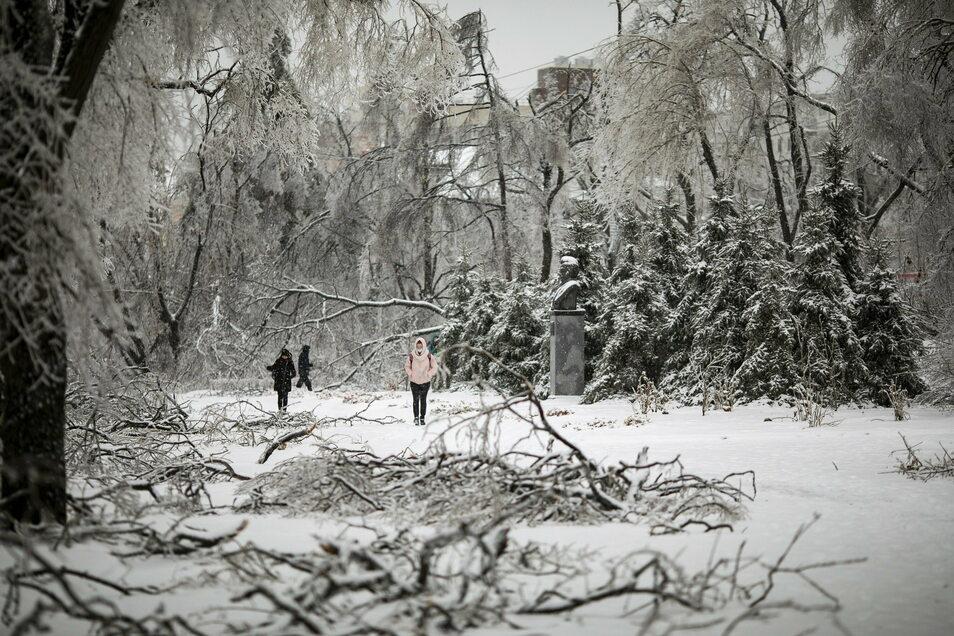 Menschen laufen nach eisigen und schneereichen Wirbelsturm in Wladiwostok zwischen umgestürzten, mit Eis bedeckten Baumästen. Tausende von Menschen in der fernöstlichen Region Primorje blieben ohne Heizung oder Strom
