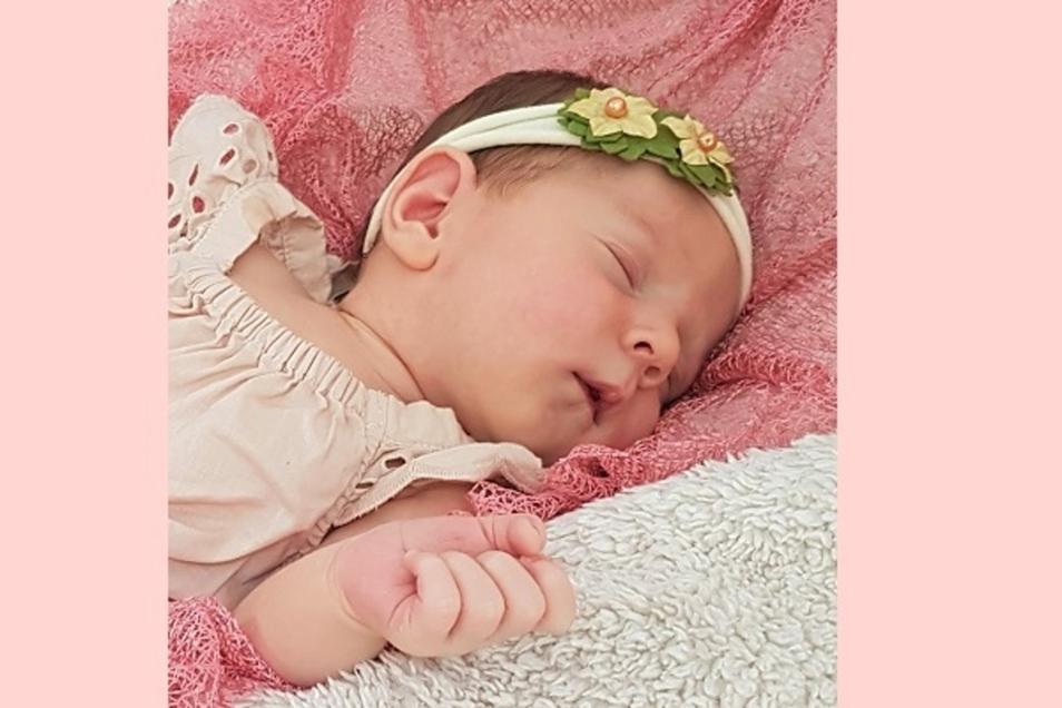 Louisa Amayah Geboren am 7. August Geburtsort Dresden Gewicht 3480 Gramm Größe 51 Zentimeter Eltern Judith und Manuel Mühmelt Wohnort Bischofswerda