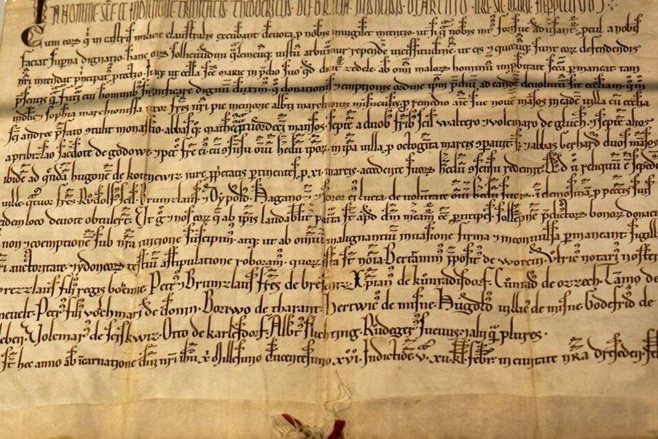 """Eine 80 x 30 Zentimeter große gefaltete Urkunde mit der Formulierung """"civitate nostra Dreseden"""" aus dem Jahr 1216 liegt in einer Glasvitrine im Stadtarchiv in Dresden."""