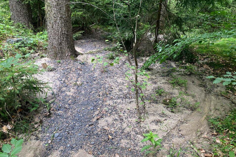 Die Ausspülungen aus den Wegen haben die Wassermassen teilweise tief in den Wald mitgenommen.