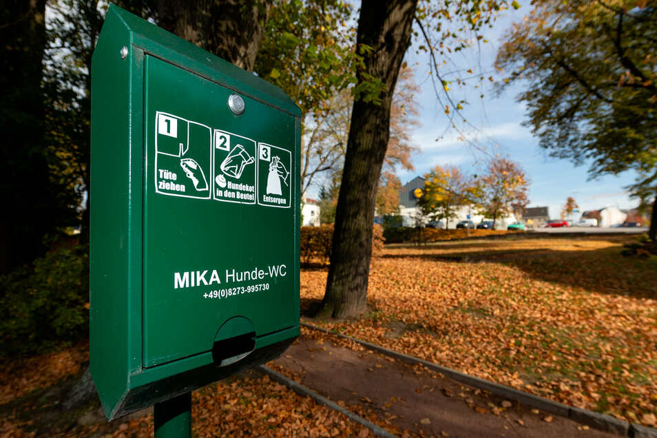 21 grüne Hundekottüten-Spender stehen in Radeberg. Müssten sie auf umweltfreundlicheres Material als Plastik umgerüstet werden?