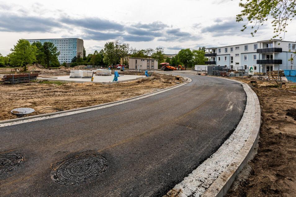 Während die Irritationen um die Eiche an der gewähnten Kreuzung Paul-Ehrlich-Straße/ Hufelandstraße nun letztgültig ausgeräumt werden konnten, wurde die Paul-Ehrlich-Straße (hier im Bild) selbst asphaltiert.