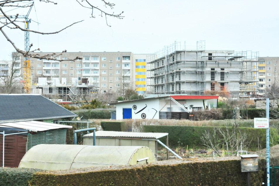 An der Weßnitzer Straße, gegenüber dem Wohngebiet Waldsiedlung Kupferberg, baut die Wohnungsgenossenschaft zwei neue Wohngebäude.