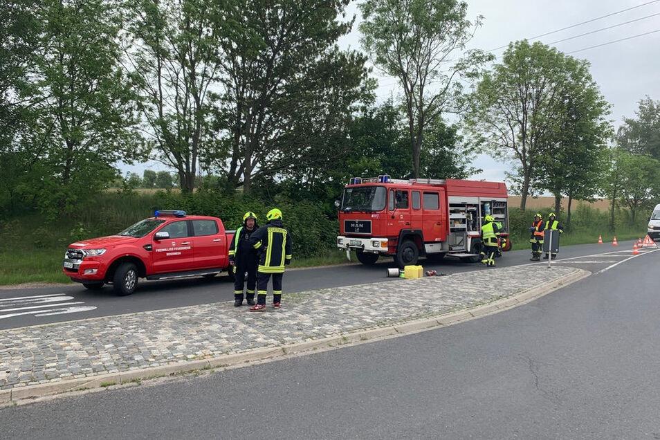 Die Feuerwehren Roßwein und Striegistal waren vor Ort.