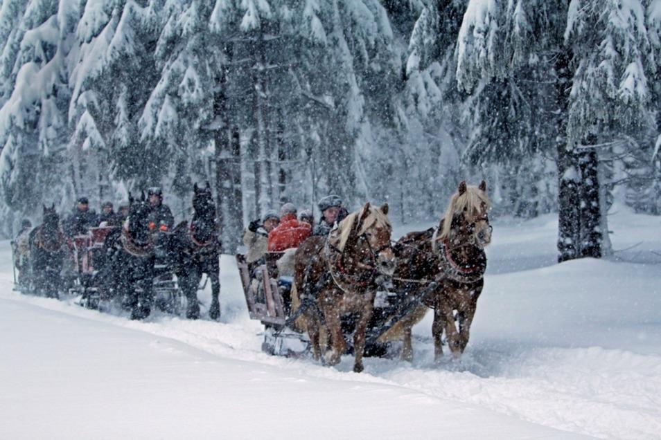 Kutschfahrt in der schönen Winterlandschaft