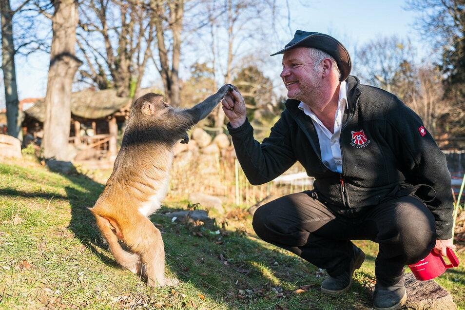 Sucht freiwillige Helfer für die viele Arbeit: Der Görlitzer Tierparkdirektor Sven Hammer.