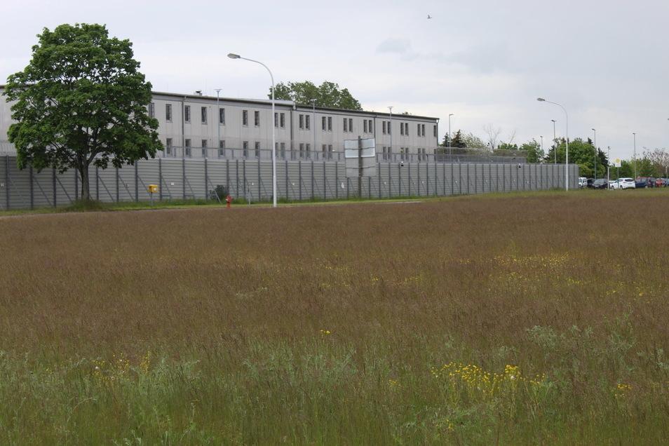 Auf der Wiese gegenüber der JVA Zeithain soll ein Logistikzentrum gebaut werden.