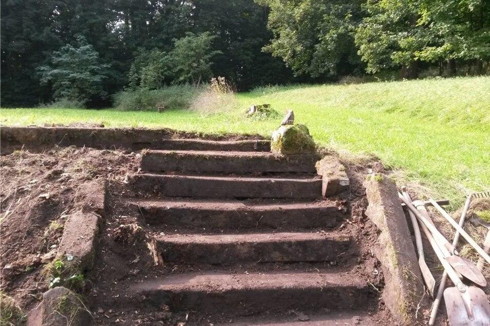 Die verschüttete und zugewucherte Treppe der einstigen mittleren Orangerie des Hainewalder Schlosses ist jetzt wieder ausgegraben worden.