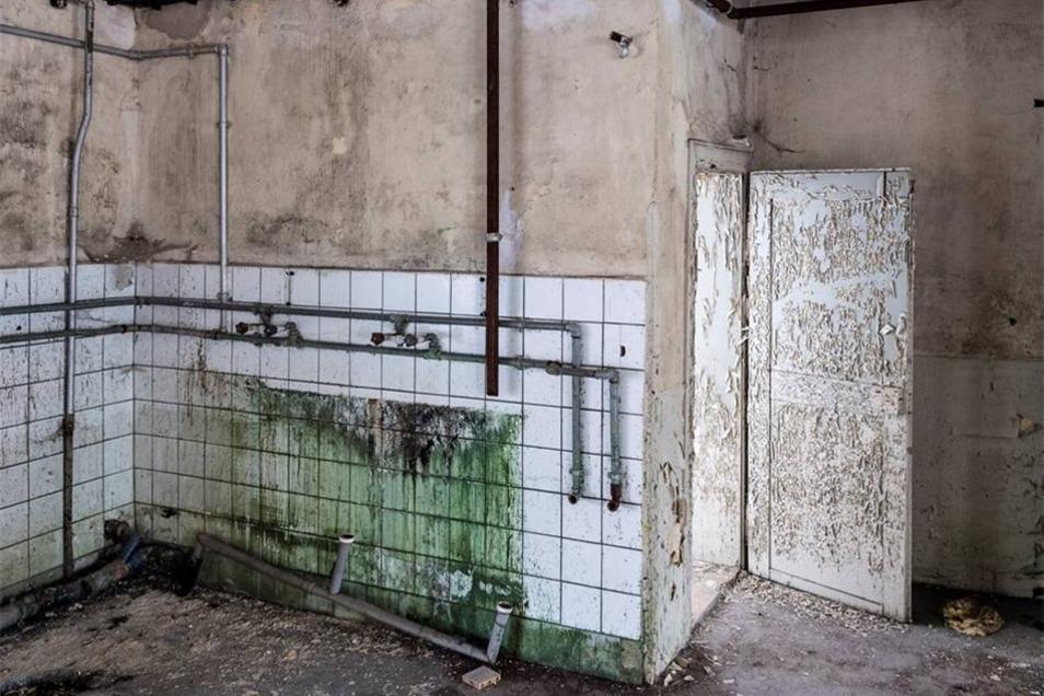 Wenn der Lack in Ruhe abblättern kann, entstehen faszierende Oberflächen, so wie an dieser Tür, die zu einer Duschzelle führt.