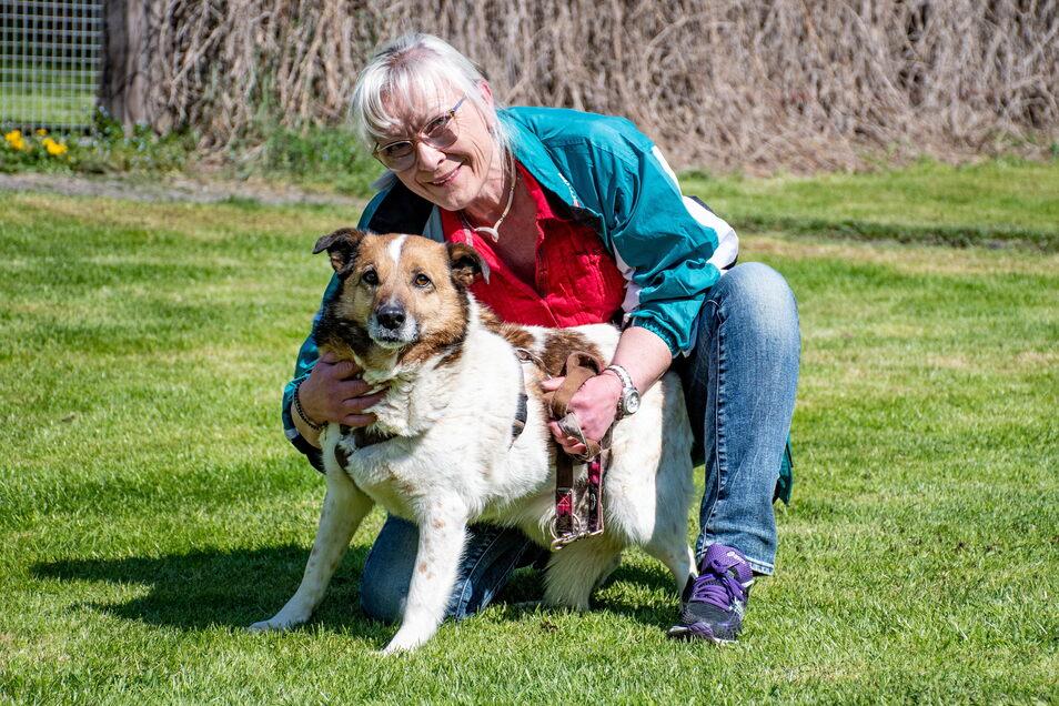 """Mischlingsrüde Petice (6): Petice ist ein kleiner Problemfall im Tierheim. """"Er ist zwar sehr lieb und zugänglich, aber erst nach einiger Zeit und Geduld"""", beschreibt Marlies Przybilla den Sechsjährigen. Er sei ein richtiger Straßenhund aus Rumänien, der mit der Angst zu kämpfen hat. Fremde Personen müsse er erst kennenlernen und ihnen Vertrauenschenken, so die Tierheimleiterin. """"Grundsätzlich ist er ein Hund für jemand Einzelnen, der sich die Zeit für den Vierbeiner nimmt."""""""