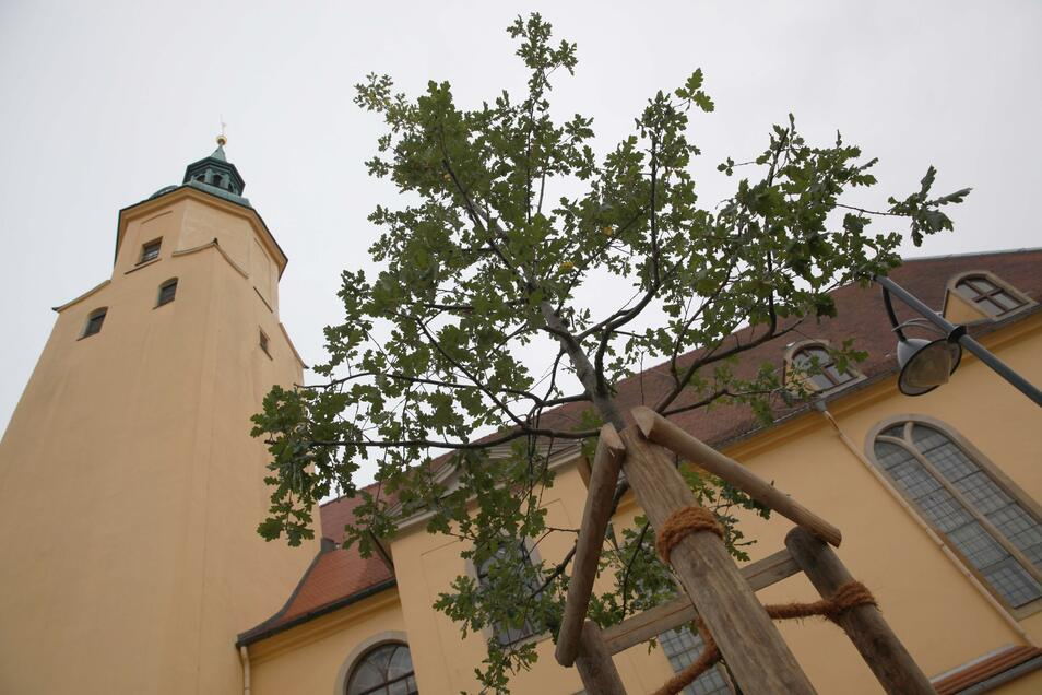 Das Kirchspiel rund um Pulsnitz lädt am Sonntag zum Entdeckertag ein.