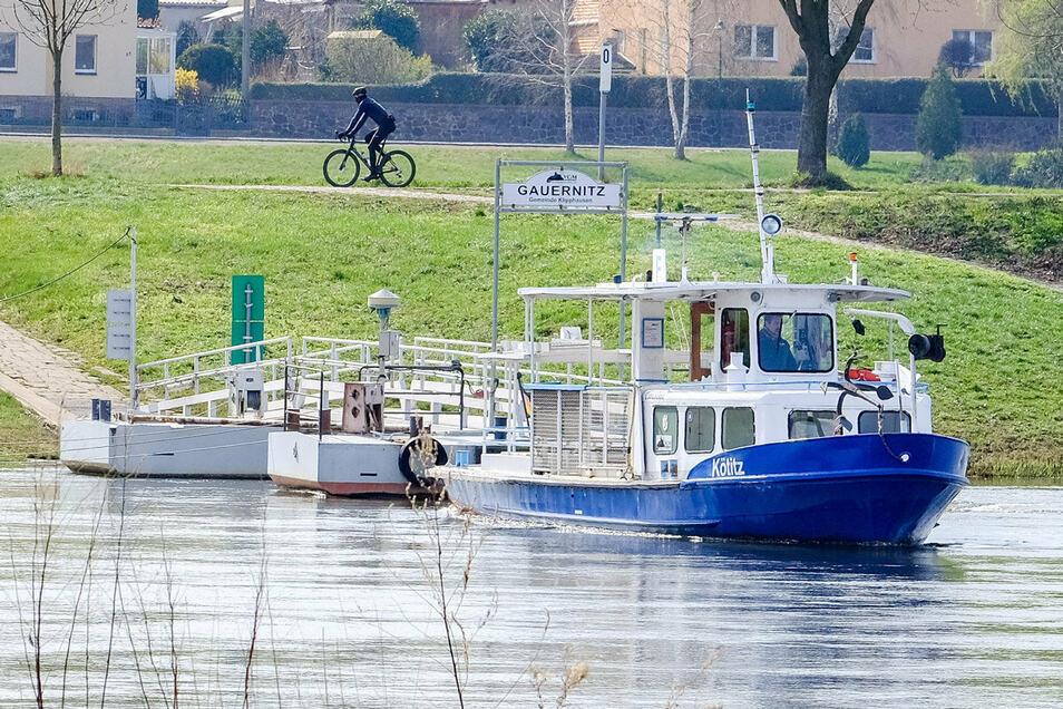 Der Senior im Elbland ist das Fährschiff Kötitz. Es stammt aus dem Jahr 1969 und verbindet das ganze Jahr über Coswig/Kötitz und Gauernitz.