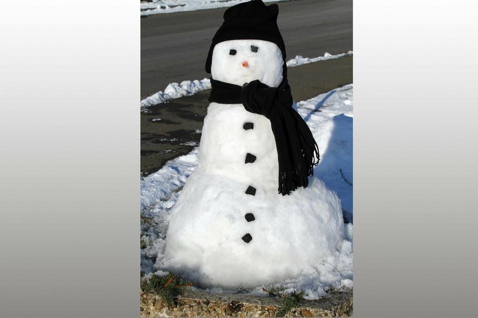 Leonie Korth (5) aus Roßwein hat diesen Schneemann zusammen mit ihrem Opa Enrico Korth gebaut.