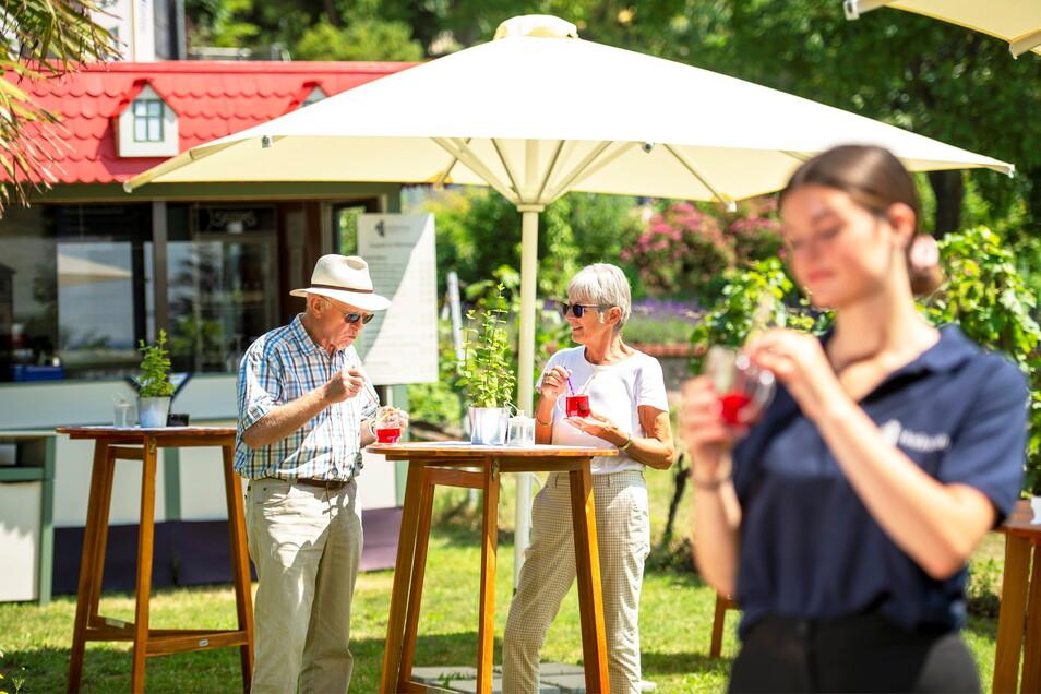 Der neue Erdbeergarten im Weinberg neben dem Eingang zum Gut Hoflößnitz. Erdbeerbowle wird hier zum Erfrischen angeboten.