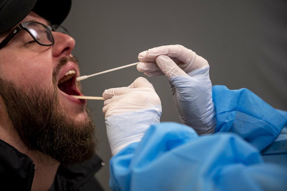 Ein Abstrich für einen Corona-Test. Diese PCR-Tests mit Abstrichen aus dem Mund-, Nasen- oder Rachenraum sind sehr genau. Allerdings dauert die Auswertung etwa 24 Stunden. Die neuen Schnelltests liefern Ergebnisse in 15 Minuten, sind aber ungenauer.
