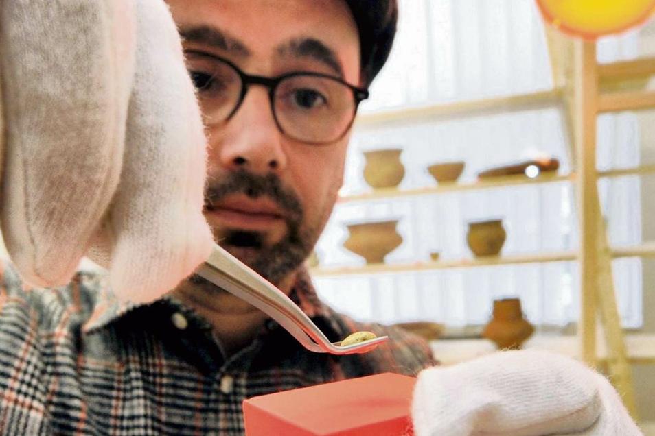 """Restaurator Reinhard Kappler platziert das Goldtröpfchen in einem Vitrinenkasten. Zwei solcher klitzekleinen Goldstücke fanden die Archäologen auf einem Gräberfeld bei Trebendorf im Tagebau Nochten. """"Ausgesprochen selten und deshalb sehr besonders"""", so di"""