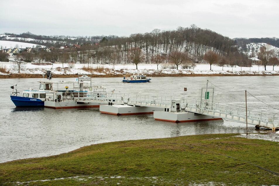 Noch alles im grünen Bereich bei der Fähre in Kötitz. Bei einem Pegelstand noch unter drei Metern kann das Schiff gut übersetzen.