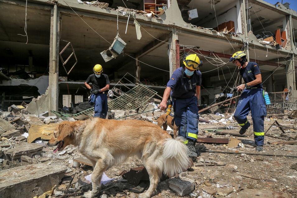 Neben Rotem Kreuz, Arche Nova und der Diakonie sind auch Mitarbeiter des Technischen Hilfswerks in Beirut. Sie suchen unter den Trümmern nach Vermissten.