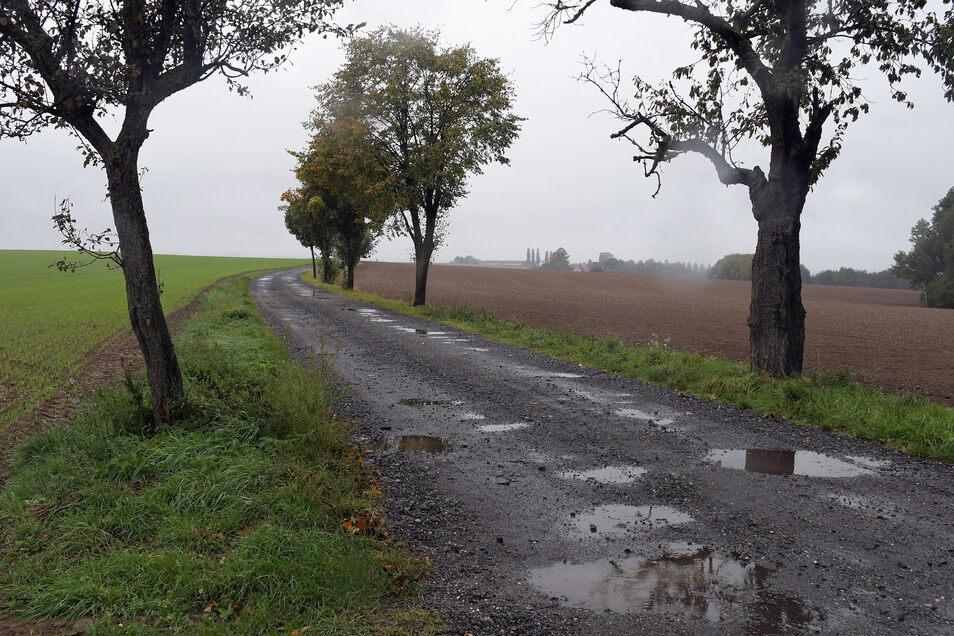 Der Mönchsweg soll ausgebaut werden.