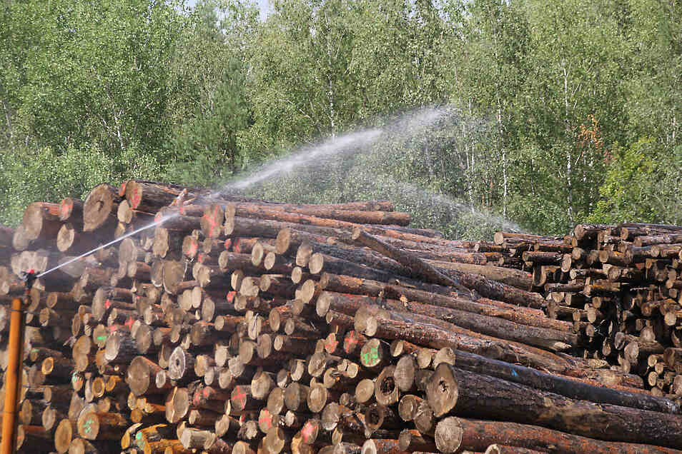 Die Sprinkleranlage des Nasslagerplatzes wird mit Wasser betrieben, das aus Brunnen gefördert wird.