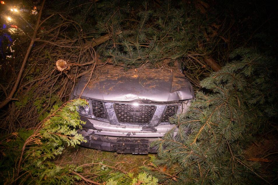 Das Auto landete in einem Gebüsch.