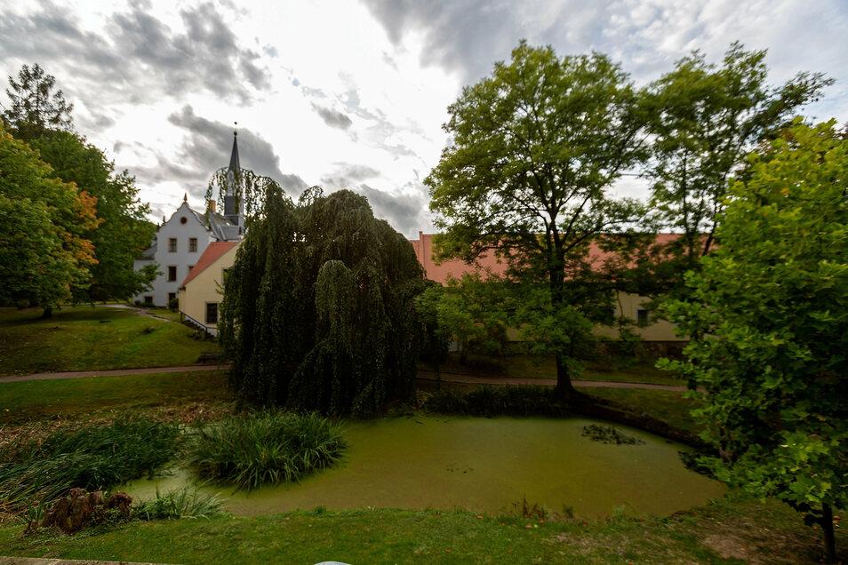 Der Schlosspark in Freital-Burgk ist schon schön grün. Anderswo fehlt es noch an Bäumen und Büschen.
