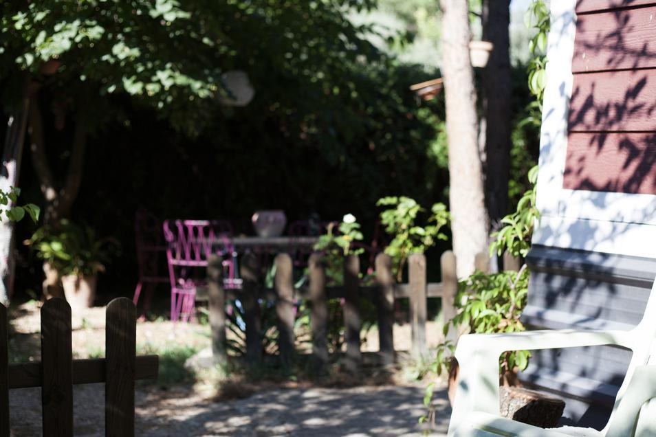 Grün ohne Sonnenlicht: Sogar Essbares lässt sich auf schattigen Balkonen anbauen.