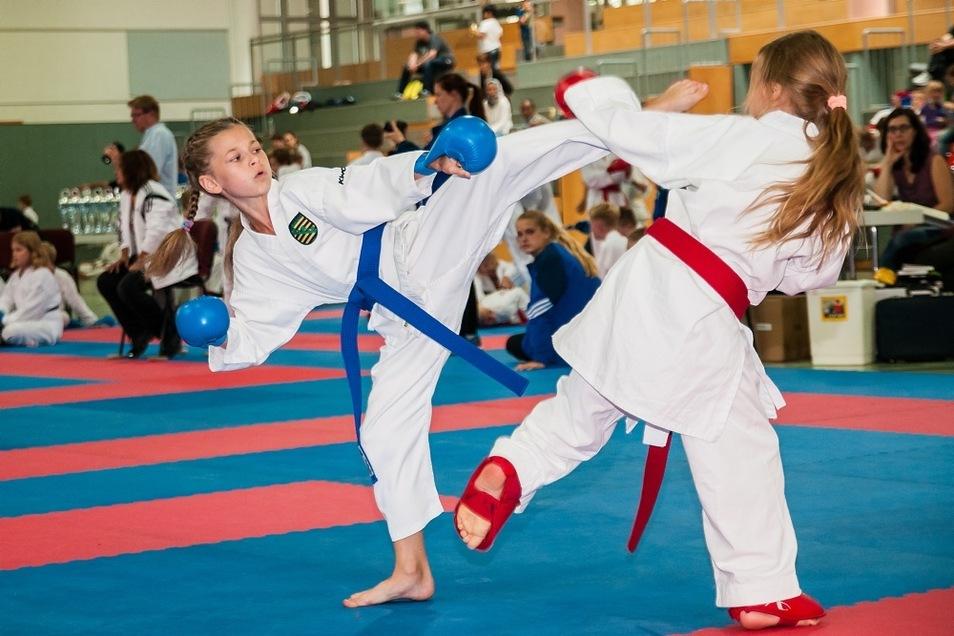 """Körperbeherrschung und Kraft machen jenen Sport aus, der in Hoyerswerda nun schon seit dreißig Jahren im Verein """"Karate-Do"""" im Mittelpunkt steht."""
