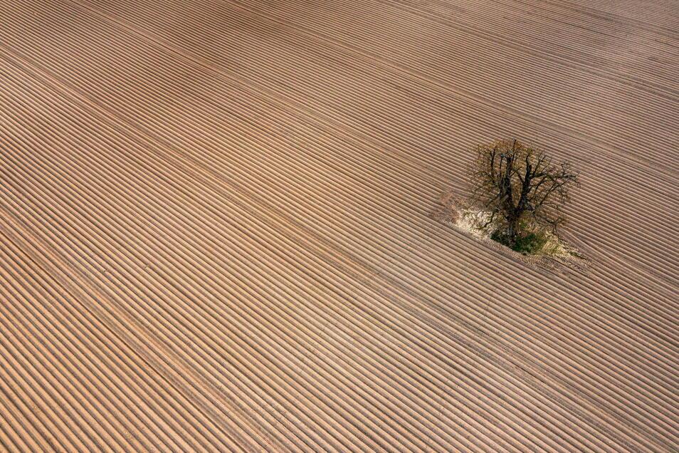 Extremwetter machen nicht nur den Landwirten das Leben schwer.
