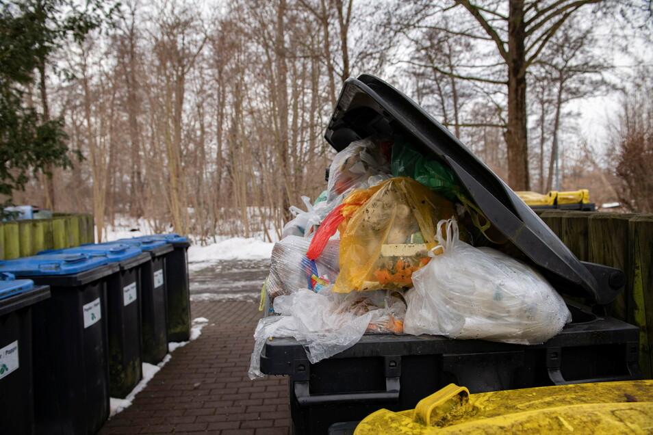 Am Stadtpark in Großenhain harrten noch am Mittwoch Hausmüllbehälter auf ihre Entleerung. Doch die Entsorger führen gute Gründe an, warum es in den letzten Tagen Einschränkungen gab.