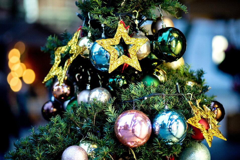 Vor allem im Freien wie vor Geschäften stehen schon reichlich Weihnachtsbäume.