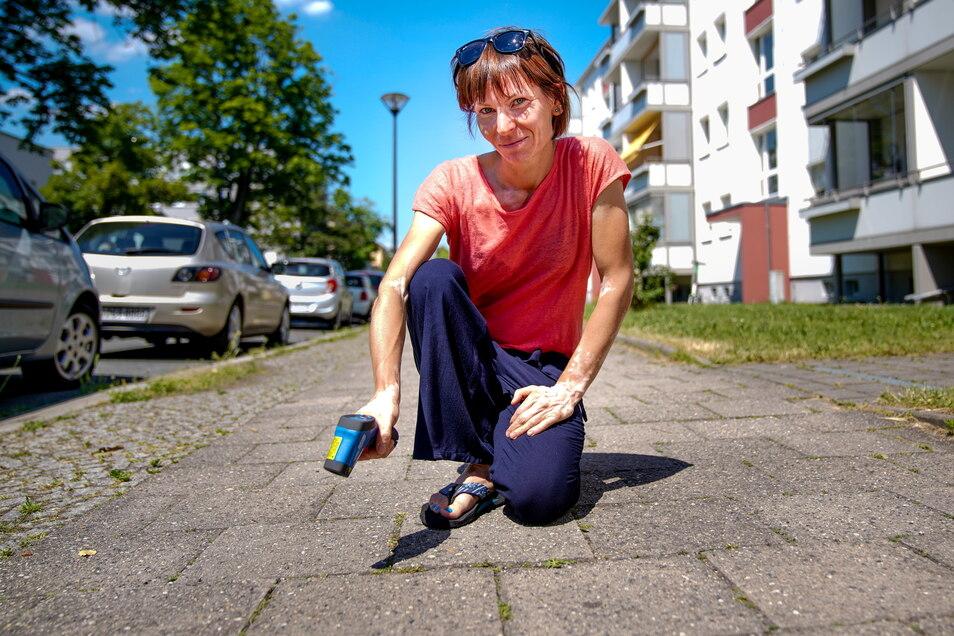 Franziska Reinfried vom Umweltamt Dresden, misst, wie sehr sich der Straßenbelag aufheizt.
