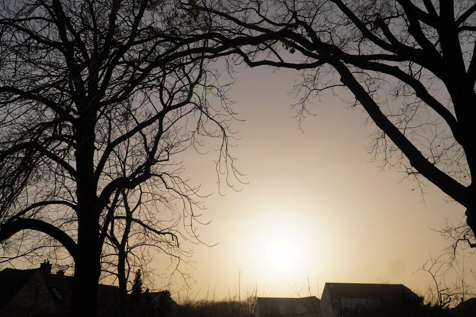 Mittwoch 16.30 Uhr in Dresden Altdobritz. Keine Wolke ist am Himmel zu sehen, dennoch befindet sich die Sonne hinter einer diffusen Wand. Große Mengen Saharastaub sind in der Luft.